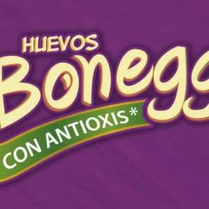 Bonegg